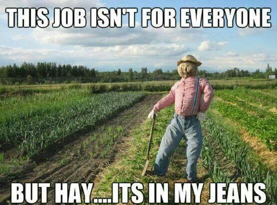 Haha its in my jeans cause its hay haha