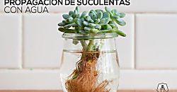 SOLO ROPITA DE BEBE EN PUNTO, GANCHILLO Y TELA (pág. 18) | Aprender manualidades…