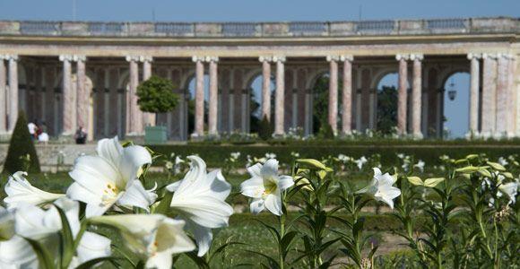 Jardim do Grand Trianon em Versalhes
