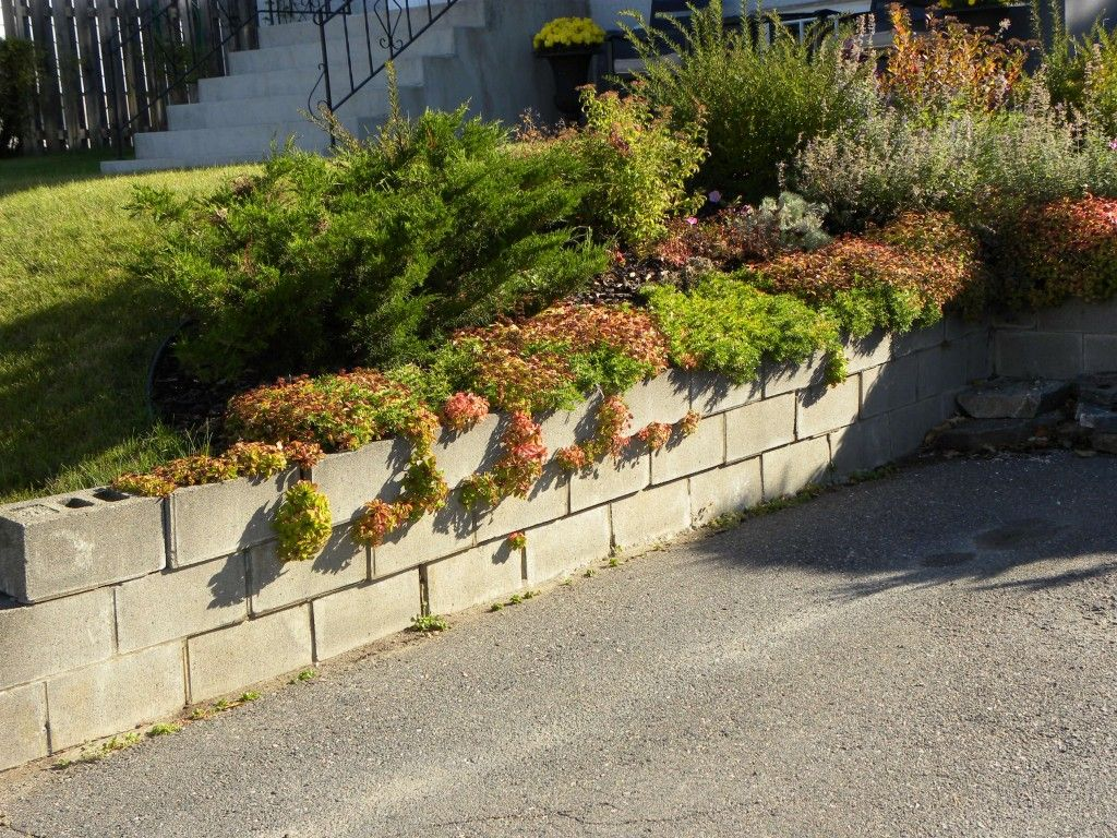 Diy cinderblock retaining wall how to build a cinder block diy cinderblock retaining wall how to build a cinder block retaining wall incoming bytesincoming amipublicfo Image collections