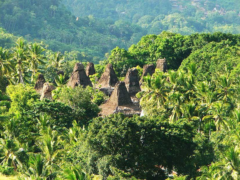 Asia, Indonesia, Sumba, West Timor