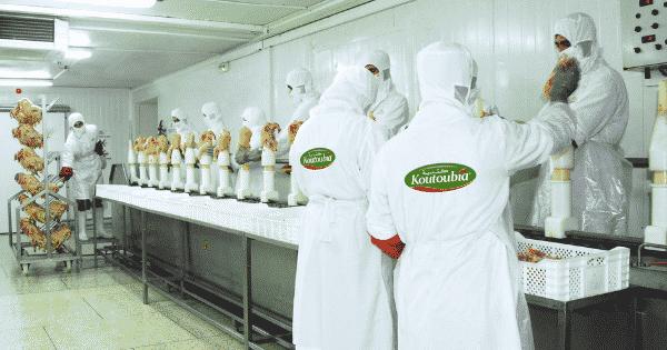 Koutoubia Recrute Responsable Export Dreamjob Ma Dimajob Offre Emploi Emploi Site Emploi