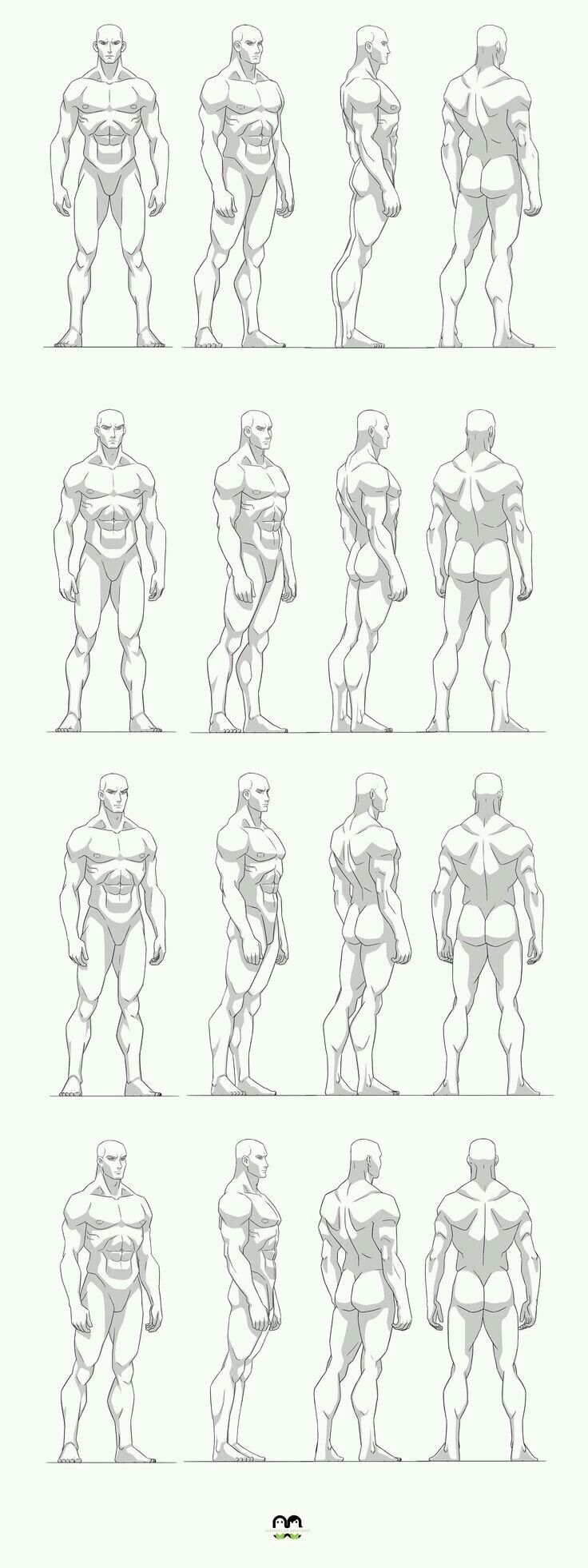 Muscle Male References Anatomy Drawing Anatomy Sketches Art Reference Poses