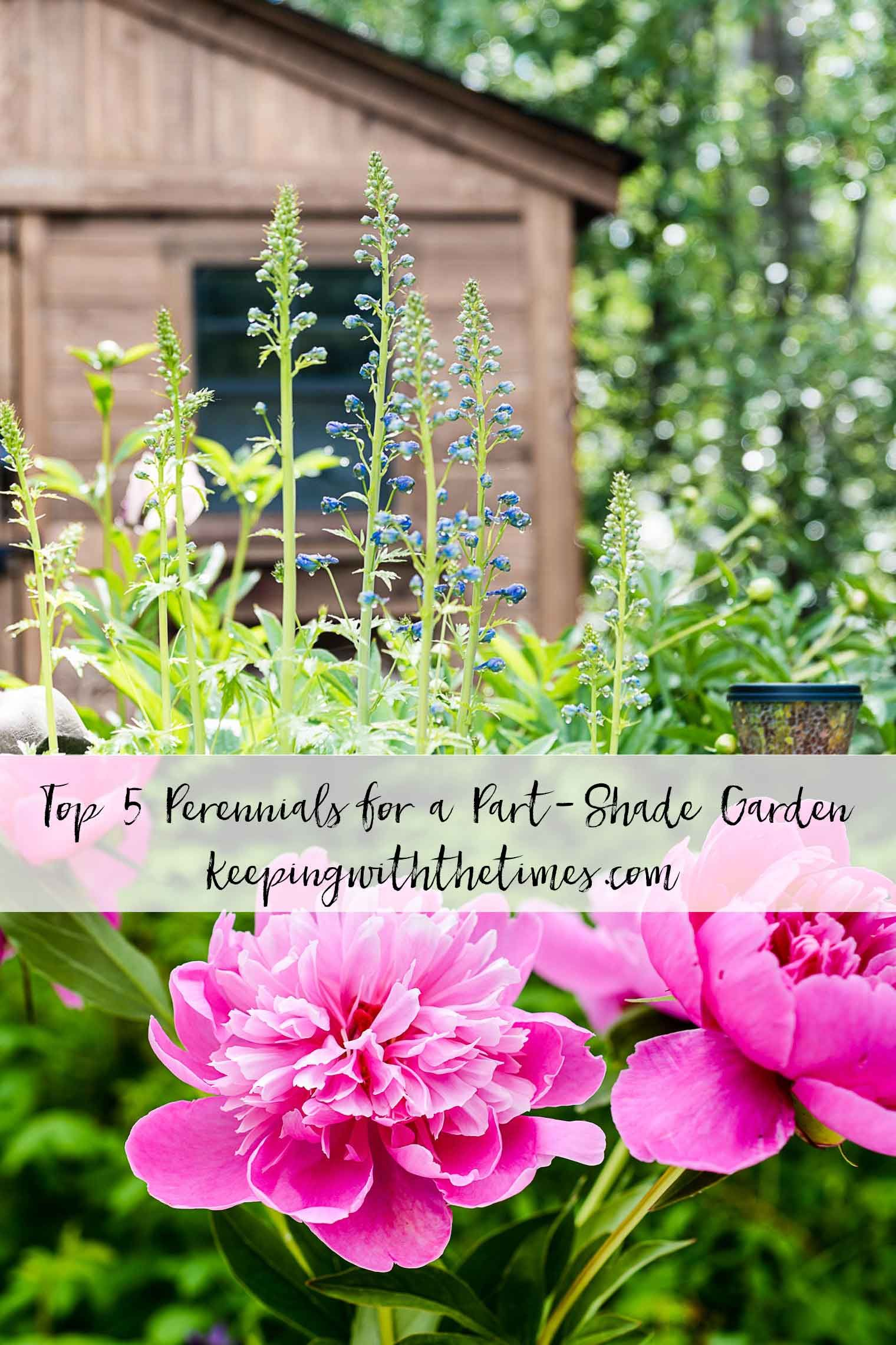 Top 5 Perennials for a Part-Shade Garden; my choices might surprise you! #shadeperennials