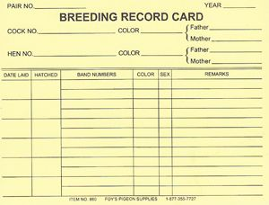 860 Breeding Record Cards 25 With Images Cards Records Notes