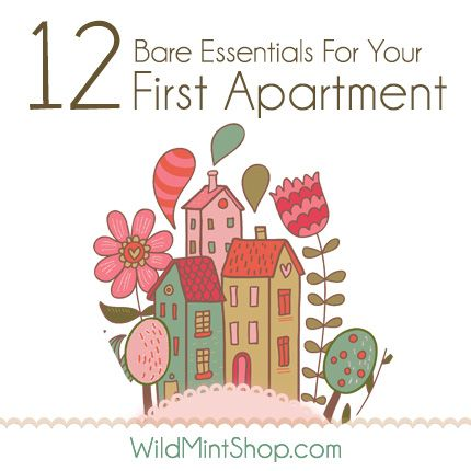 12 Most Important Items for Your First Apartment moving out - new apartment checklist