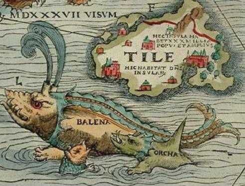 old world map sea monsters google search ilustraciones
