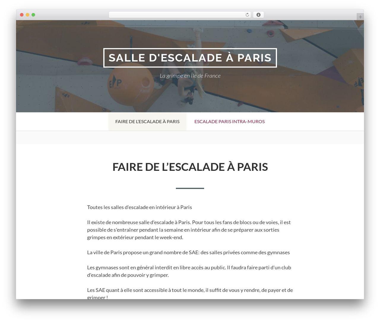 Business Plan Salle D Escalade toivo lite free wp themesami keijonen - paris-escalade