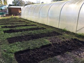 Creating new beds for Horticulture students
