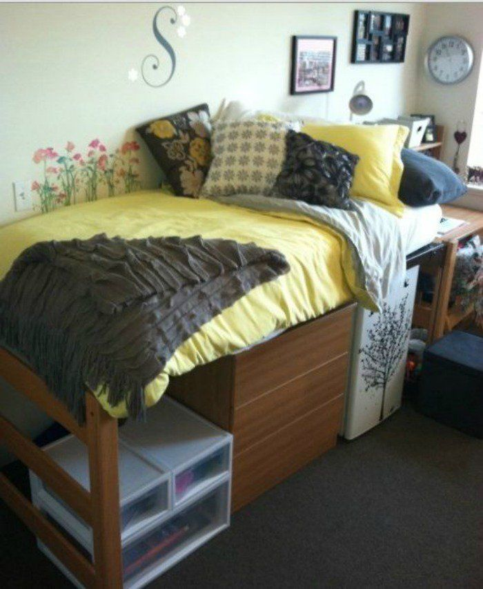 Haley S College Dorm Essentials Under Bed Storage Dorm Room