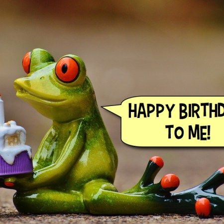Birthday Frog - Bunkaryudo Funny Blog