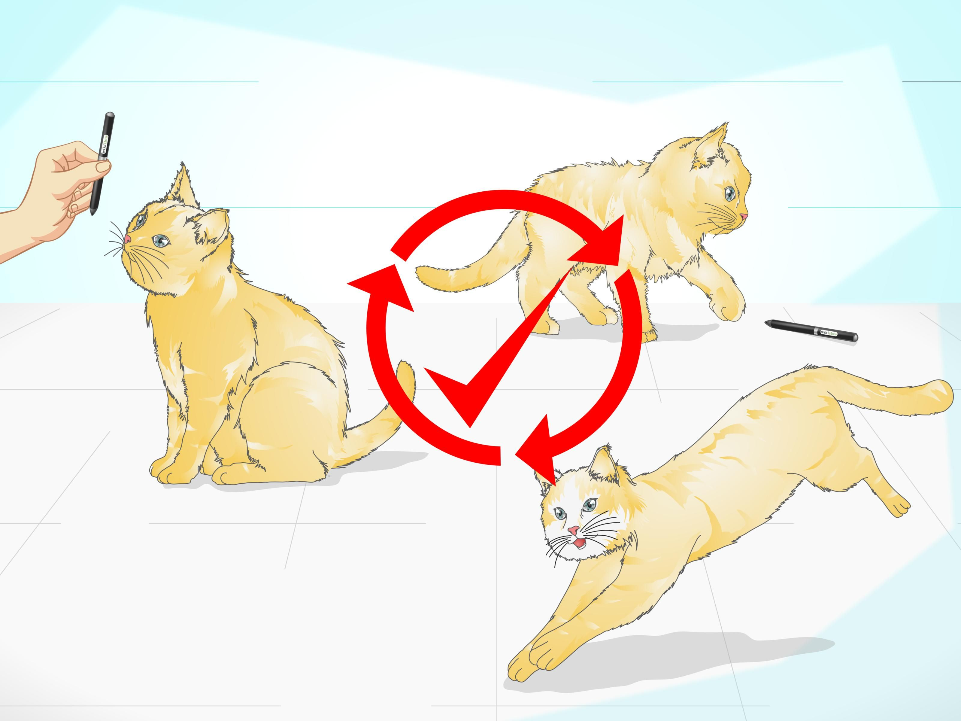 How To Clicker Train A Cat Cat Has Fleas Cat Training Cat Care
