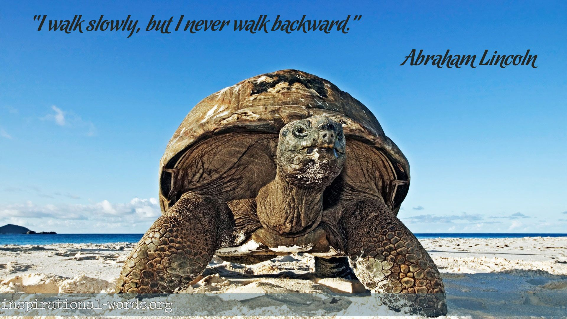 """Inspirational Wallpaper Quote by Abraham Lincoln """"I walk slowly, but I never walk backward."""""""
