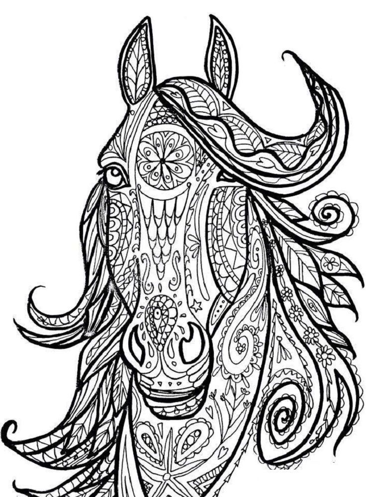 Free Horse Head Coloring Pages Horse Coloring Books Horse