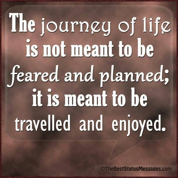 Life Journey Quotes Adorable Life Is A Journey Quote Insta Quotes Wild Orange Living Travel