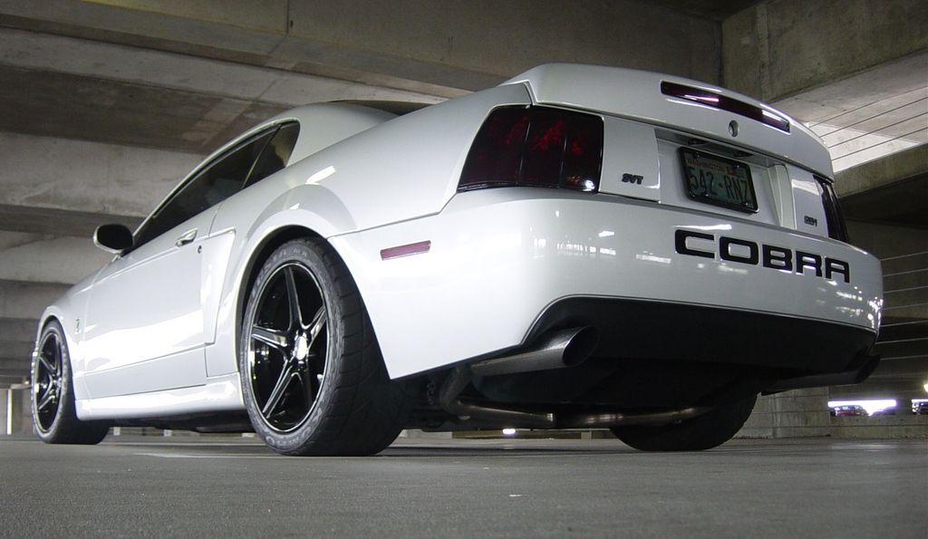 Pin By Chad On Mustangs Mustang Cobra Mustang Ford Mustang