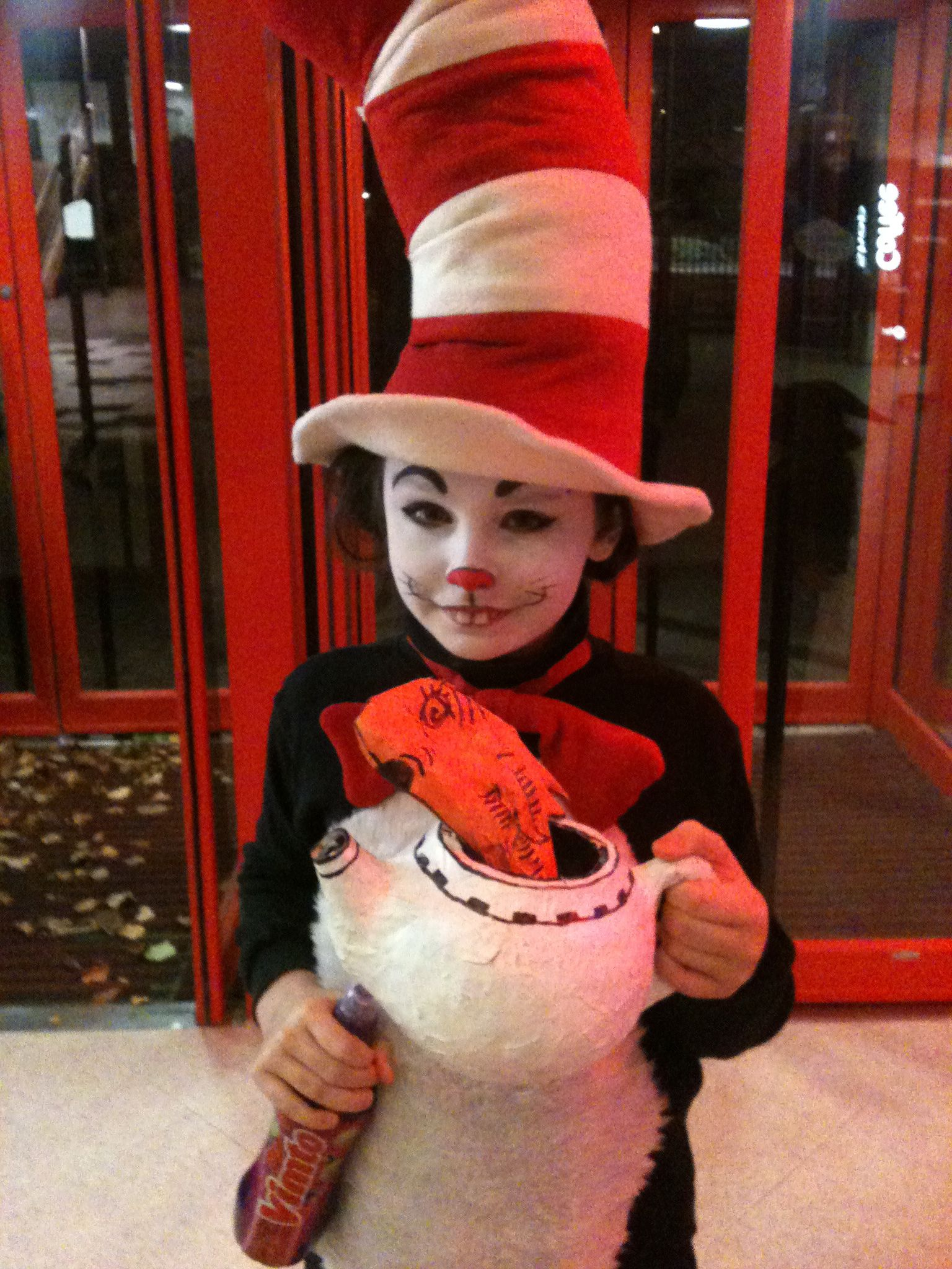 Cat in the Hat costume and face paint Cat costume kids