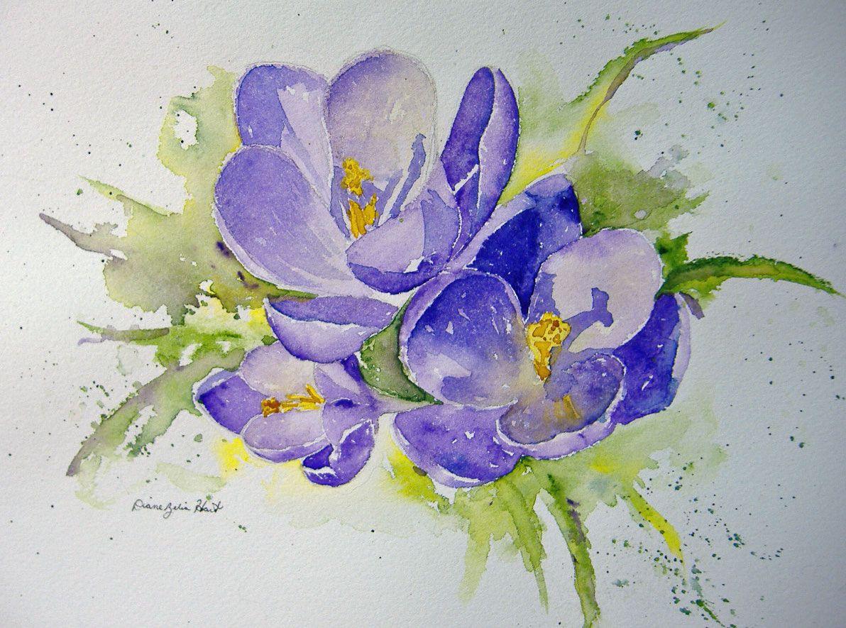 My little crocus Watercolor flowers paintings, Painting