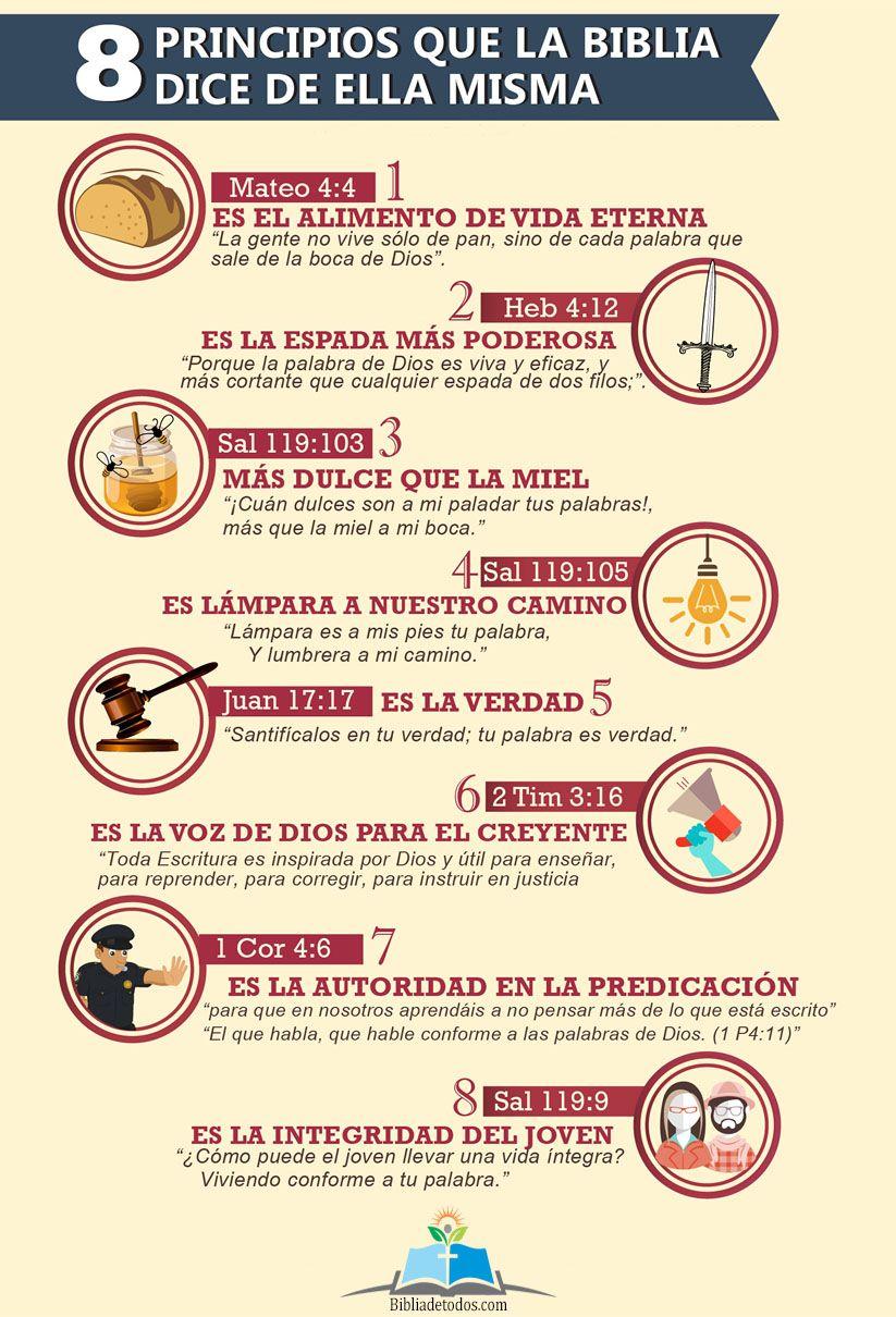 8 Principios Que La Biblia Dice De Ella Misma La Biblia Dice Palabras De La Biblia Biblia