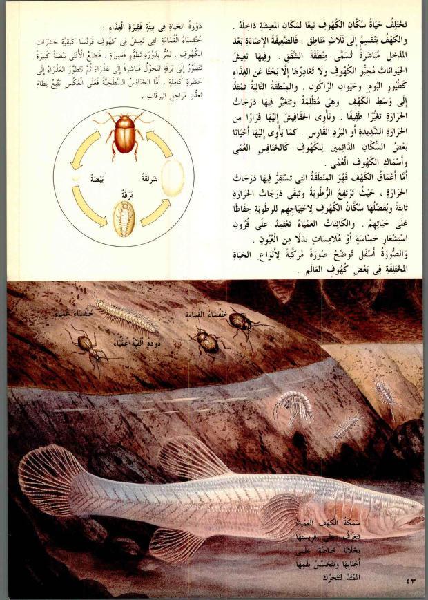 دائرة معارف القرن الحادي والعشرين للعلوم والتكنولوجيا المتطورة والطبيعية In 2021 Vintage World Maps My Books Vintage