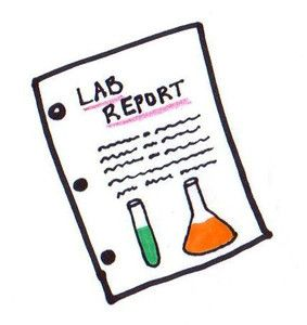 Chemistry Lapbook  Chemistry    Chemistry School And