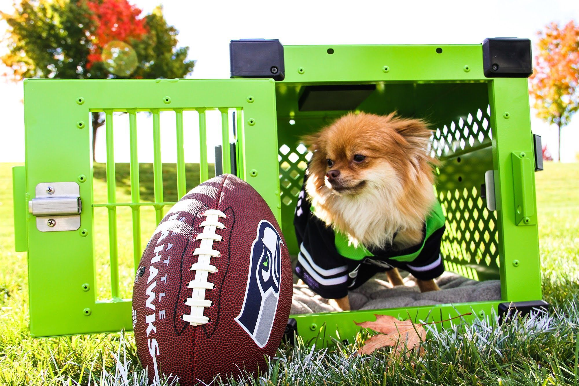 Seattle Seahawks Themed Dog Crate Made By Impact Dog Crates Size X