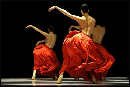 Ballet de l'Opéra de Lyon - 2009. Alain Hanel Photographies
