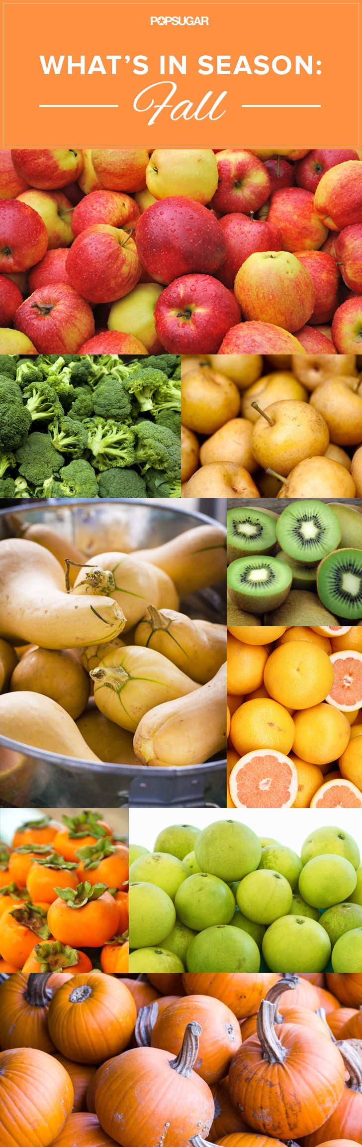 Your Ultimate Fall Produce Guide Healthy Vegetarian 400 x 300