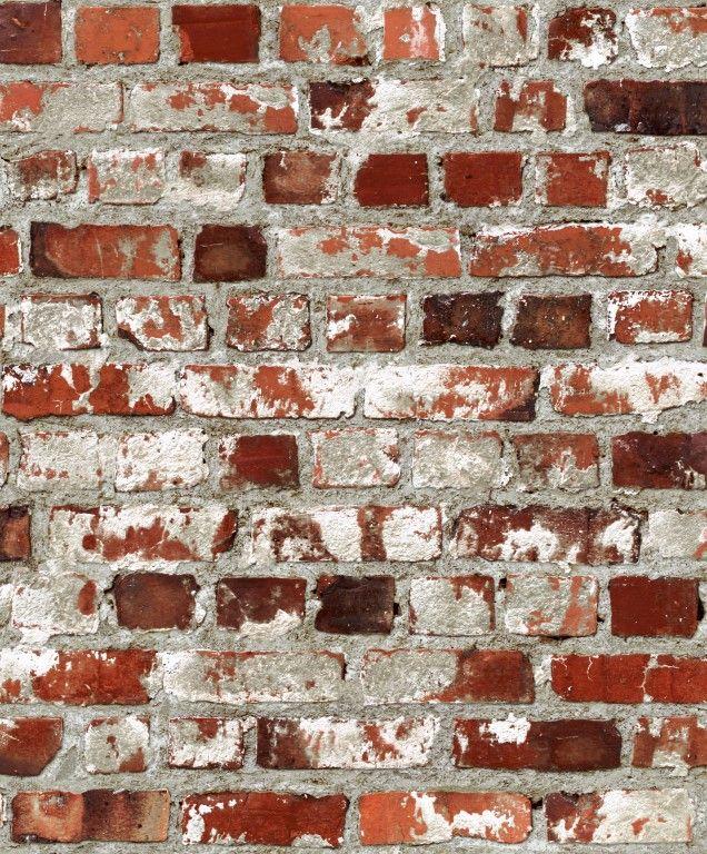 Conversational J71408 By Aspiring Walls Wallpaper For New House
