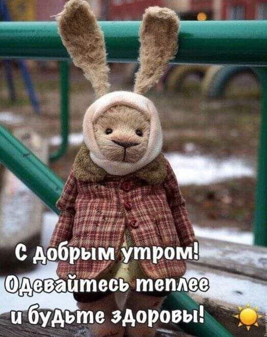Пин от пользователя Irina Odonata Krylova на доске ...