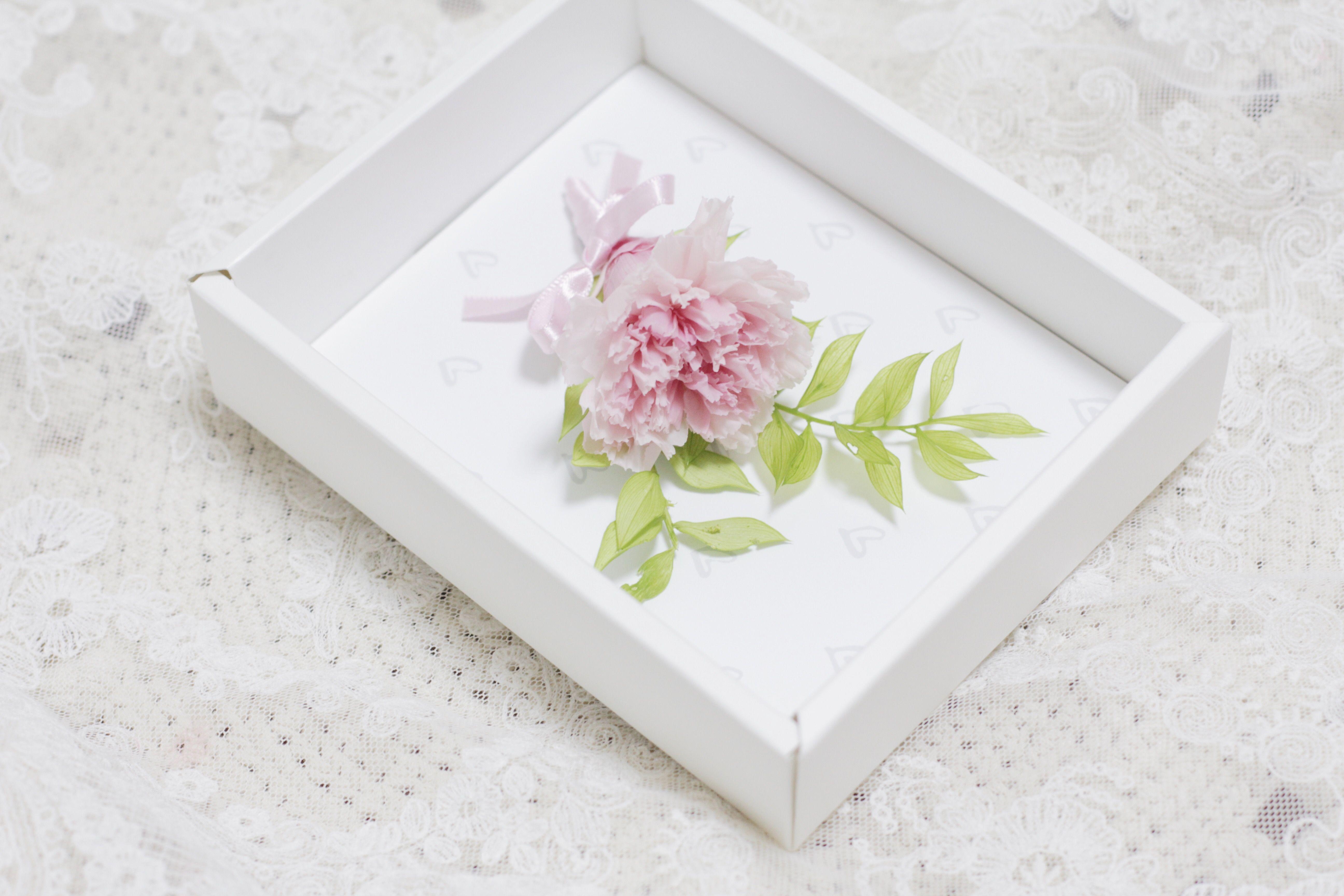 preserved carnation card  instagram @planterior