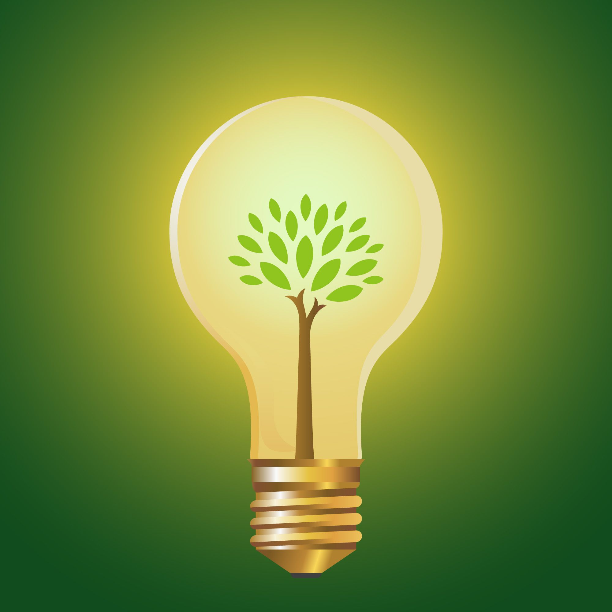 Light Bulb Light Bulb With Tree Energy Conservation Green Energy Save Electricity