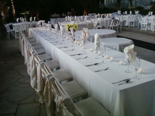 White head table white padded folding chairs st louis wedding white head table white padded folding chairs st louis wedding weinhardt party junglespirit Choice Image