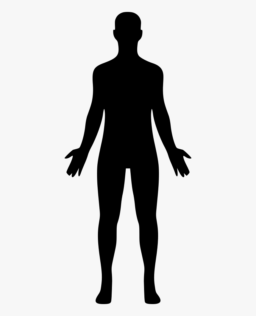 Body Png Free Human Clipart Transparent Png In 2021 Human Clipart Human Silhouette Clip Art