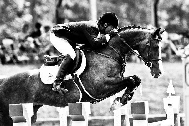 Professional Horse Jumping Photography | www.imgkid.com ...