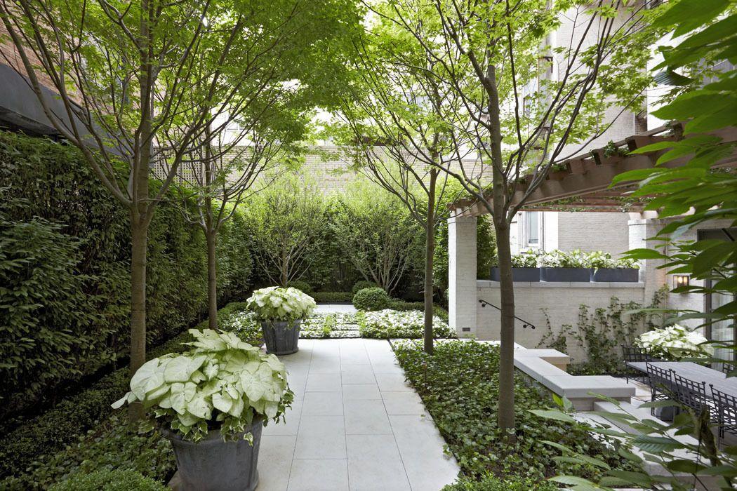 Cityscapes Edmund Hollander Landscape Architects With Images