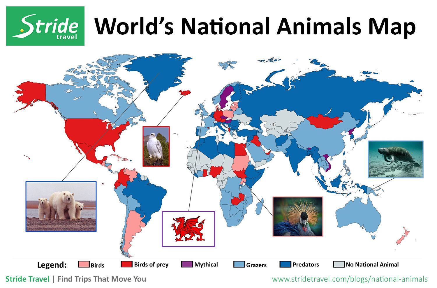 What is your countrys national animal find out here infographic travel inspiration gumiabroncs Choice Image