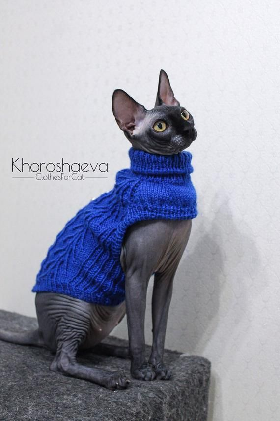 Hand Knitted Sphynx's Blue Cozy Tank Top, Cat's Soft Pullover With Arans, Handmade Sweater Gift For Cat, Cat's Clothes T-shirt For Sphynx