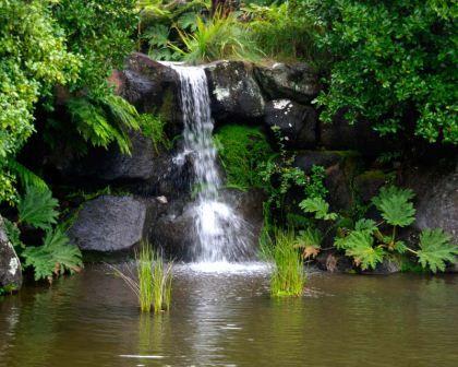 0306544942671f4d8d51a02f3d949ff4 - Where Is Mount Annan Botanic Gardens