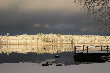 Photo by Jasmine Hietala, Tampere.