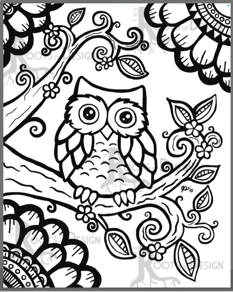 Pin by kris wieter on Coloring Pages Pinterest Owl, Adult - copy baby owl coloring pages for adults