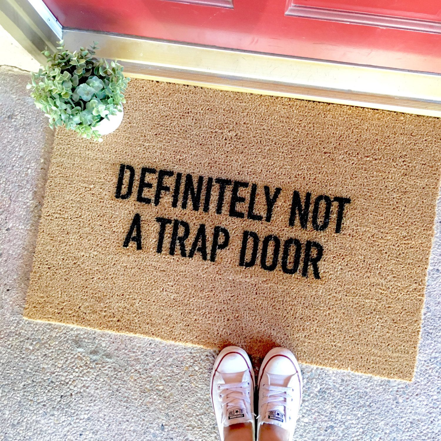 The This Is Not A Trap Door Doormat Funny Doormats Cute