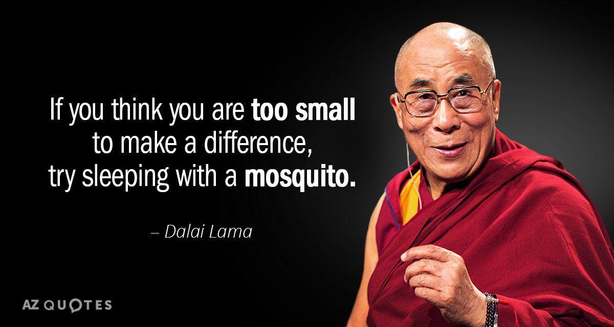 Wordsofwisdom From The Dalai Lama In 2020 Dalai Lama Quotes Dalai Lama Dali Lama Quotes