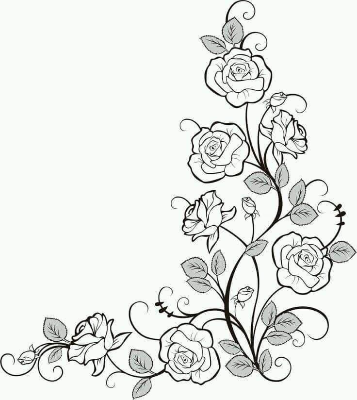 Spiegel tekenen   Drawing borders, Drawings, Flower drawing