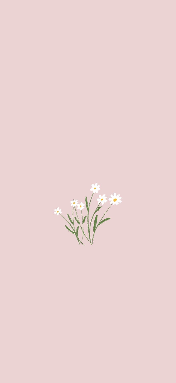 Flowers In 2020 Minimalist Wallpaper Phone Iphone Wallpaper Plants Simple Iphone Wallpaper