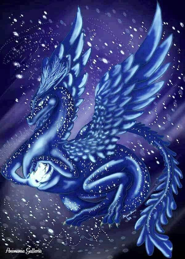Pin By Patty Eckman On Dragons Dragon Pictures Dragon Artwork Fantasy Dragon