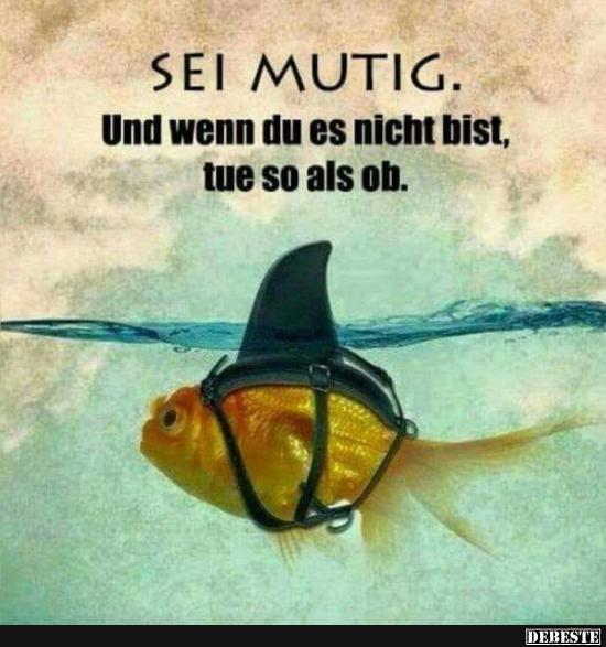 Besten Bilder, Videos und Sprüche und es kommen täglich neue lustige Facebook Bilder auf DEBESTE.DE. Hier werden täglich Witze und Sprüche gepostet! #hobbys