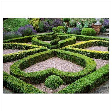 Heart Shaped Hedges Parterre Garden Garden Design Beautiful Gardens