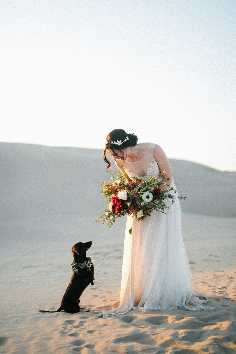 Dachshund Named Rocket With The Bride And Groom At Their Wedding