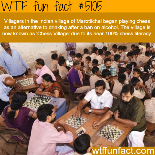 funny facts about indian girls - photo #12